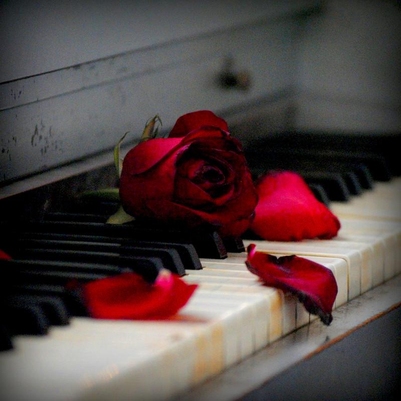 Beautiful Life Is On Piano