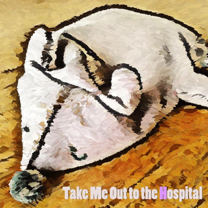 私を病院へ連れてって