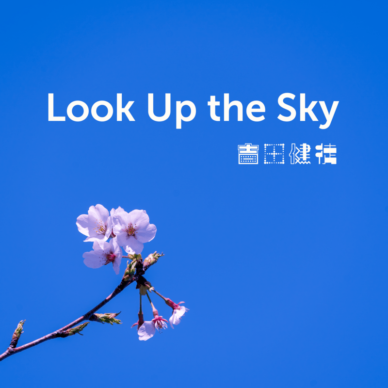 Look Up the Sky (version of 2011)