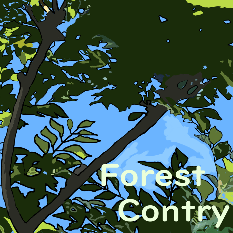 ForestContry
