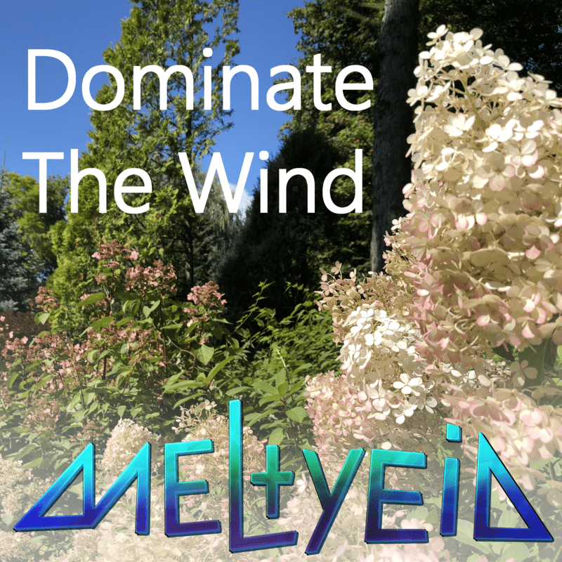 Dominate The Wind (feat. CYBER DIVA)