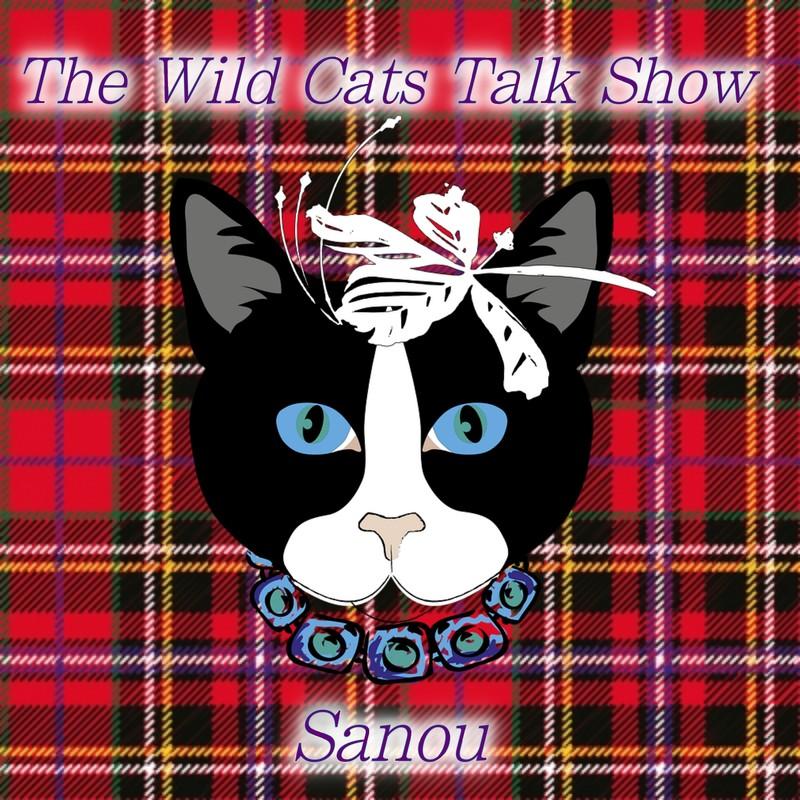 The Wild Cats Talk Show