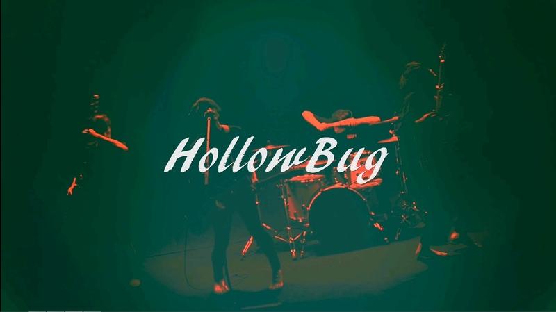 HollowBug