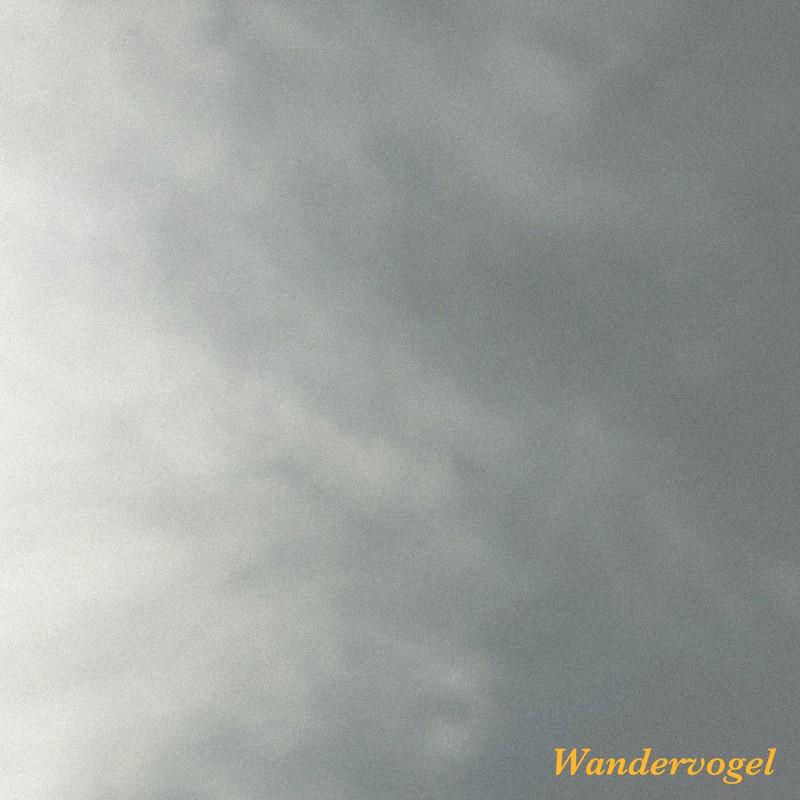 ワンダーフォーゲル