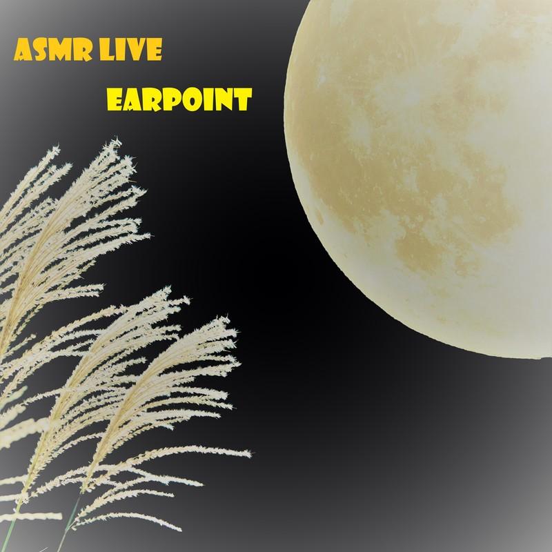 ASMR LIVE
