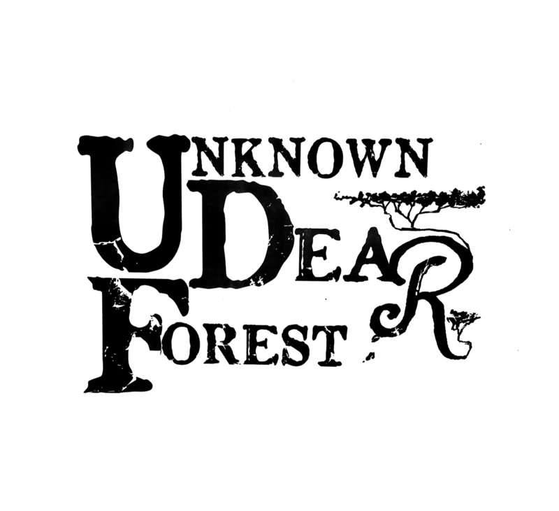 UNKNOWN DEAR FOREST